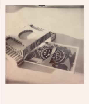 Donna_Polaroid