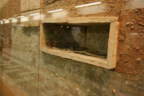 syntagma-metro-station-archaeological-display-skeleton-large1